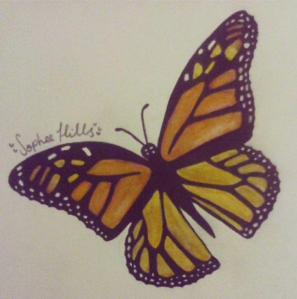 butterfly #butterfly #art