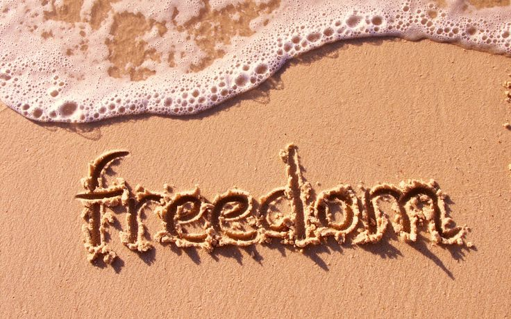 freedomHelpful People, Debt Free, Inspiration, Life, Facebook Like, At The Beach, Dreams Come True, Financial Freedom, Freedom Of Speech