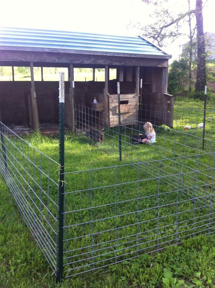 Best Pig Shelter : Best barn ideas