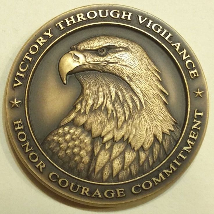 Navy Information Operations Command NIOC Georgia NETWARCOM Challenge Coin