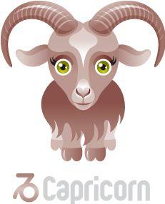 Capricorn ~ 22 December – 20 January