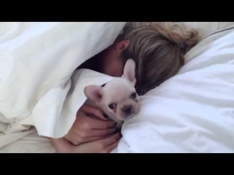 Guy surprises his wife with a little pup she thought had already been adopted. Sooooooo-oooo SWEET!