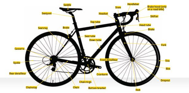 How to Buy Your First Bicycle  http://www.bicycling.com/bikes-gear/beginners/how-buy-your-first-bicycle