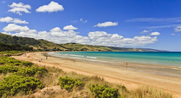 AUstralian apollo bay beach at summer time with relaxing and leisuring people sunbathing and swimming