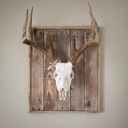 Deer Head Wall Plaque