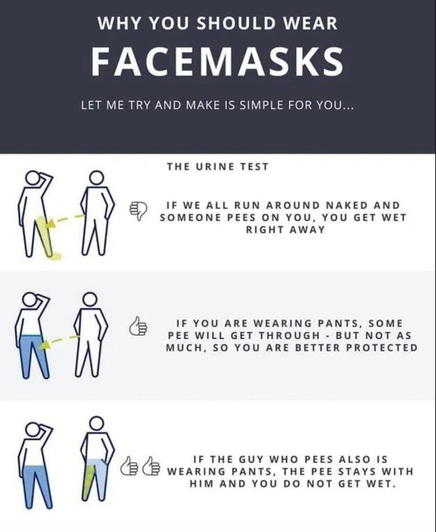 Simple Explanation For Reasons Behind Face Masks Infographics Funny Quotes Mask Quotes Make Em Laugh