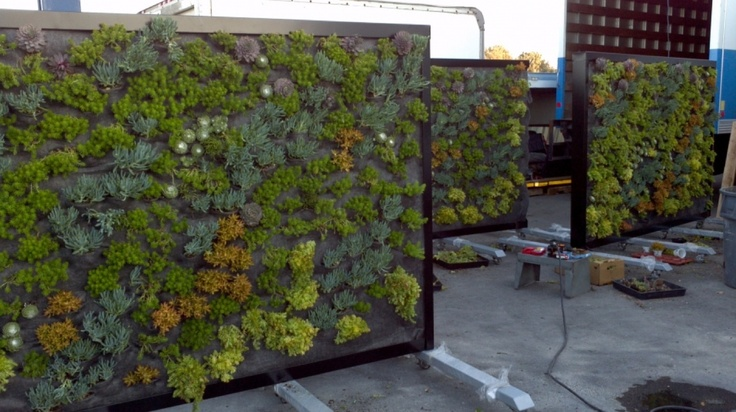 """""""The Great Barrier"""", Mobile Living Partitions Westfield"""