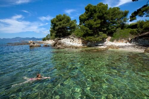 French Riviera's Best Beaches: 5 Med Escapes -   Iles de Lérins, Ste-Marguerite & St-Honorat -   Ile St-Honorat is the smaller of the two, dominated by a fortified Cistercian monastery that is still occupied by monks. Ile Ste-Marguerite is an Eldorado for those wishing to break up their beach time with hikes through pine and eucalyptus woods.  Trans Côte d'Azur boats leave from quai Laubeuf; first departure from Cannes 9am, last return to Cannes 6pm (trans-cote-azur.com)