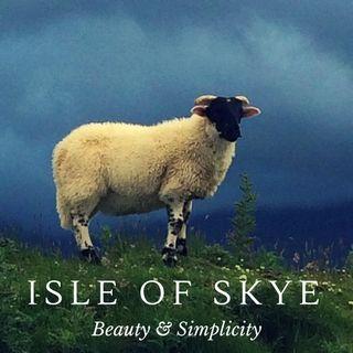 Highlands scozzesi Bellezza e semplicità