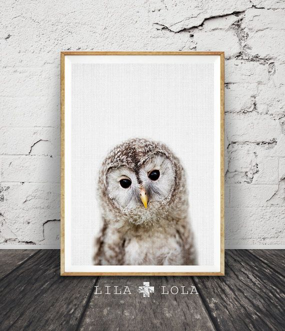 Buho Print, arte de pared de vivero, bosques vivero Animal, vivero Decor, impresión arbolados Animal, Foto de buho, bebés habitación, descarga Digital,