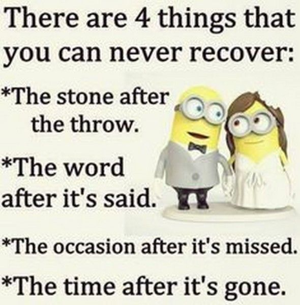 Funny Minions Pictures Gallery (06:36:14 PM, Wednesday 19, August 2015 PDT)    10 Pics