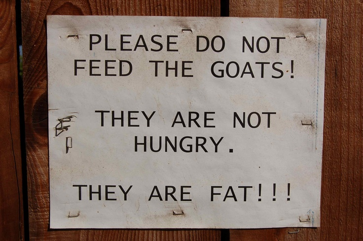 I need this sign for my goats :)