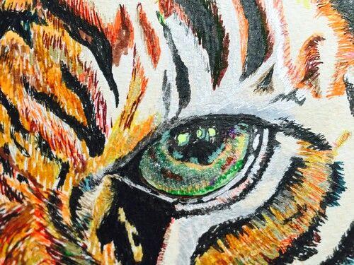 Tiger roaaaarrrr