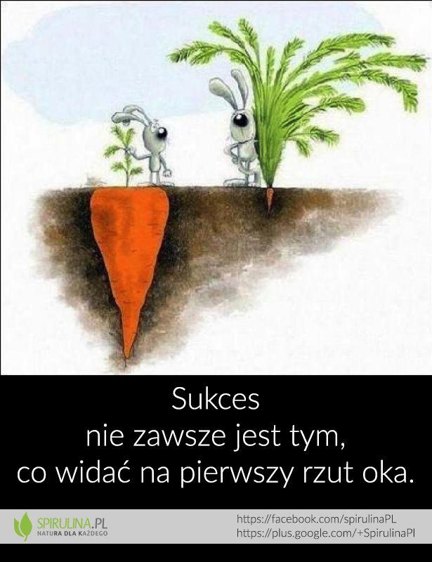 Sukces nie zawsze jest tym, co widać na pierwszy rzut oka :)
