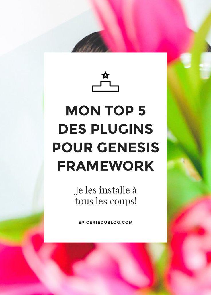 top-5-plugins-genesis