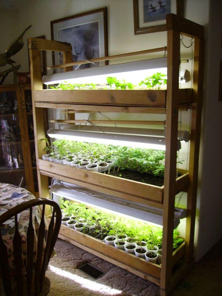 Best Closet Grow Room Setup