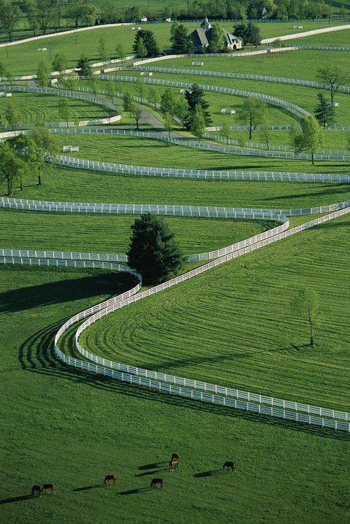 a world-class horse farm, beautiful isn't it.