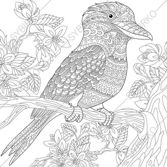 Stock Vector Of Stylized Australian Kookaburra Bird And Cherry Blossoming Tree Freehand Sketch For Adult Anti Stress Coloring Book Page With Doodle