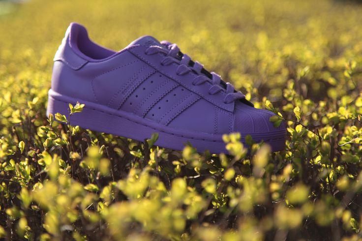Yes,Yes, Yes! #adidas #Superstar #Supercolor #adidasOriginals #sneakers #sneakerOn #Sizeer #streetwear
