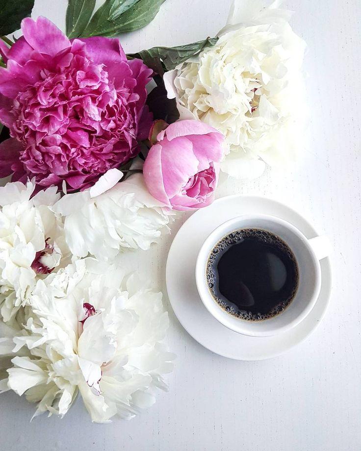 Пионы и кофе фото