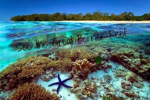 I live right on the coast line of the Great Barrier Reef it's gorgeous! And I want to explore it as much as I can