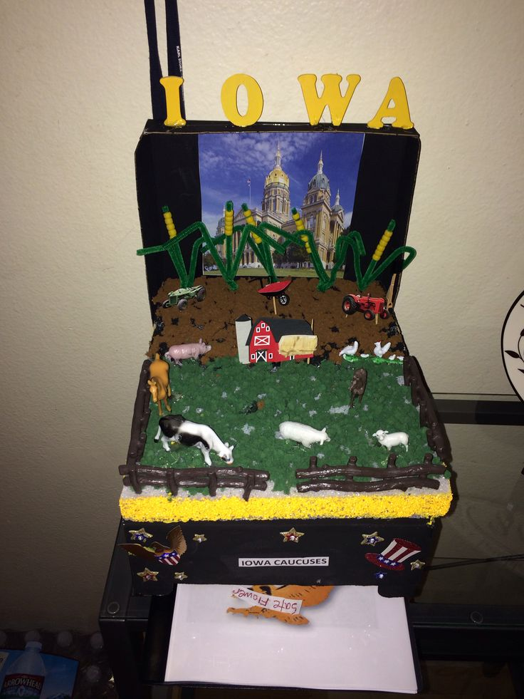 Iowa school float project | Projects | Pinterest | Iowa ...