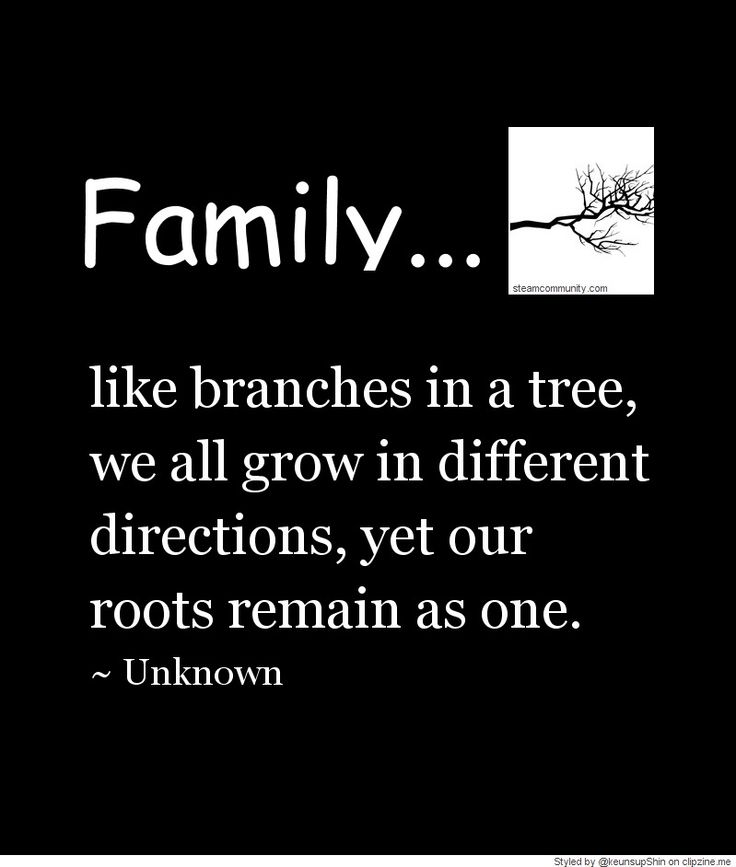 Family We Choose Quotes: 1000+ Quotes On Family On Pinterest