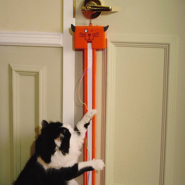 Fling-ama-String Motorized Interactive Cat Toy - $25