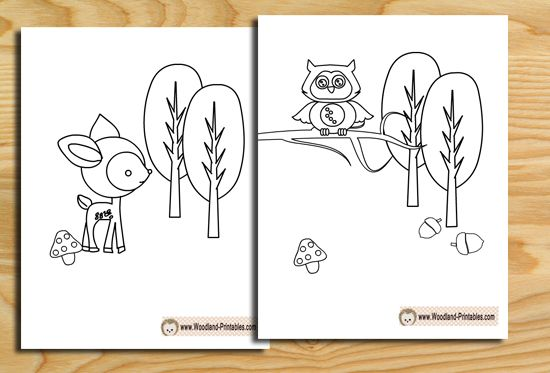 Free Printable Woodland Animals Coloring Pages Animal