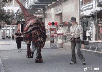 Just walking my Velociraptor
