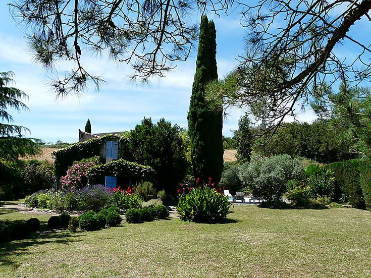 Typical french flora sourrounding this cite holiday home #france #summertime #flora