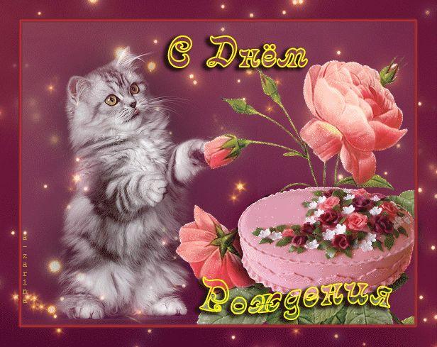 Красивая картинка, котёнок поздравляет с днём рождения и преподносит торт и розы