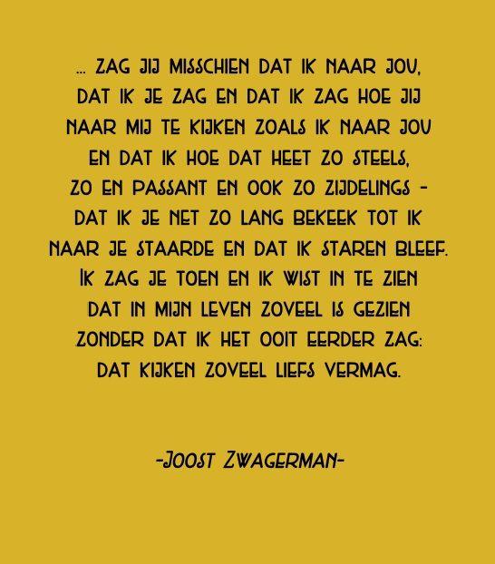 ... Zag jij misschien Joost Zwagerman