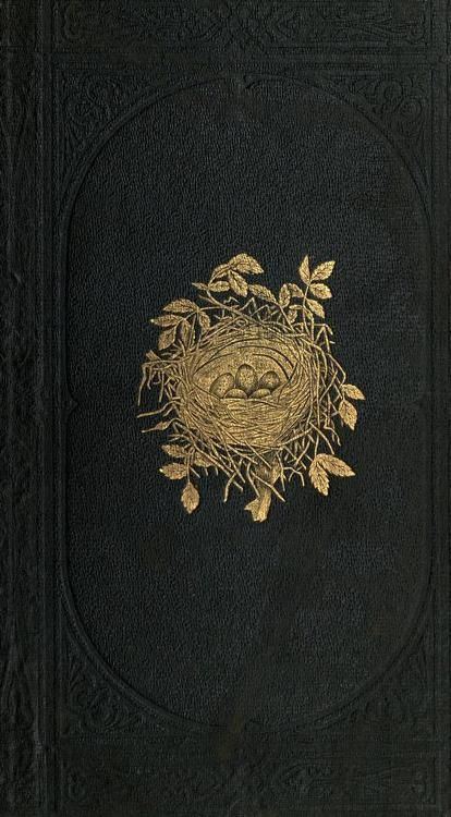 'A Natural History of the Nests and Eggs of British Birds' by Rev. F. O. Morris.