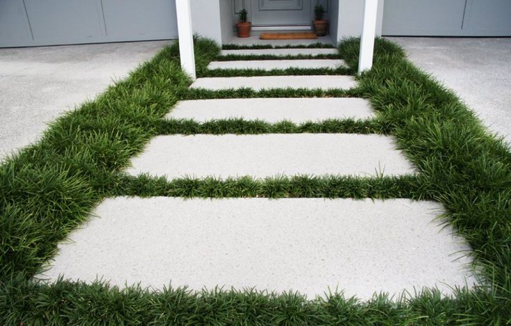 Pavers With Dwarf Mondo Grass Surround Paths Concrete