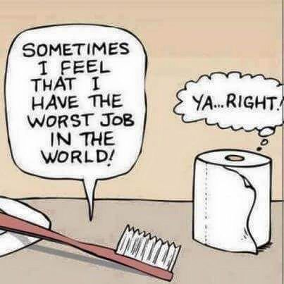 Toothbrush: Sometimes I feel that I have the worst job in the world! Toilet Paper: YA...RIGHT!