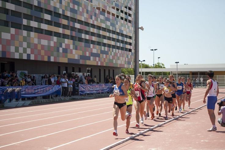 Atletismo en la UJI   Atletisme a l'UJI  www.uji.es/serveis/se/