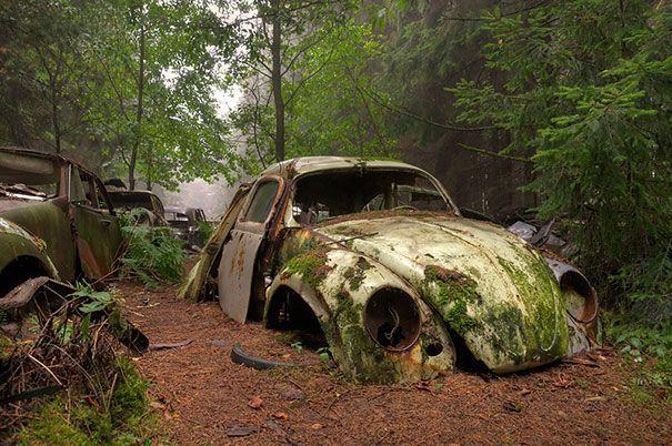 chatillon-car-graveyard-abandoned-cars-cemetery-belgium-1