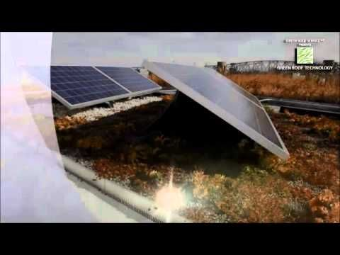 Green Roofs & Solar: Double Your Benefits! by Jörg Breuning & Ryan Miller - YouTube