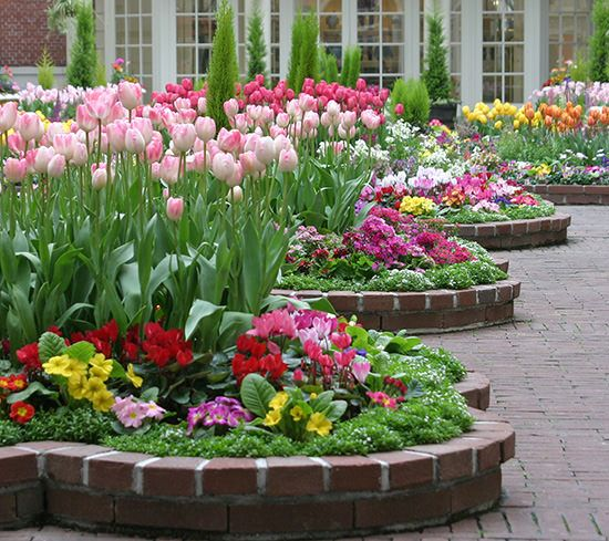 Spring Flowers And Yard Landscaping Ideas 20 Tulip Bed: 1537 Best Flower Garden Pictures Images On Pinterest