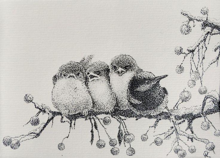Os pardais