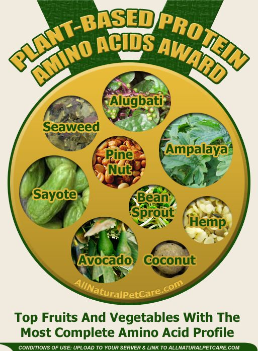 28 best whole foods plant based lifestyle images on for Fish based dog food
