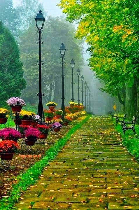 So colorful garden.
