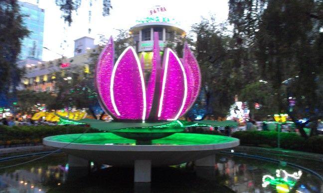 lotus at new year