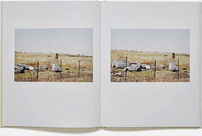 Martin Kollar: 'Field Trip'