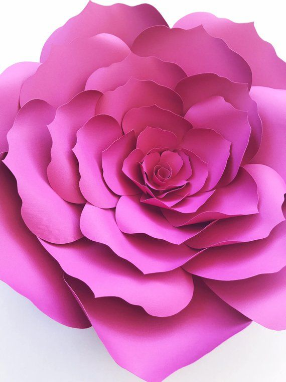любое стихи бумажные цветы для кухонь