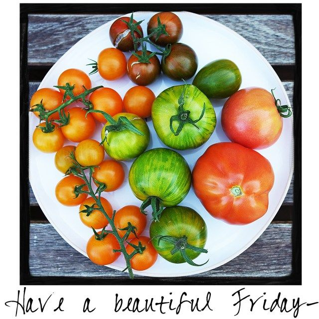 Have a beautiful Friday! Its the first Friday in September!