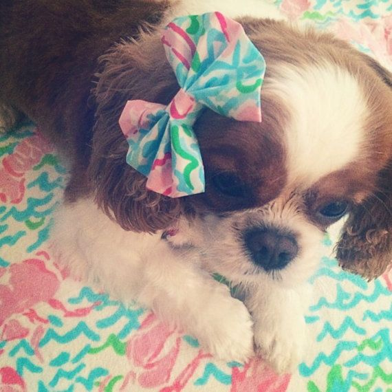 Lilly Pulitzer Dog Bow by SayItWithLilly on Etsy, $8.00