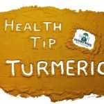 Turmeric For Dogs - Effective relief from joint and arthritis pain