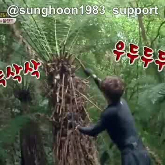 13 個讚,1 則留言 - Instagram 上的 Debbie Moh(@debbie_moh):「 #Repost @sunghoon1983_support ・・・ [ WORK HARD ] #SUNGHOON  #SBS  program <Jungle's Law Wild New… 」